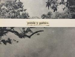 poesía y poética