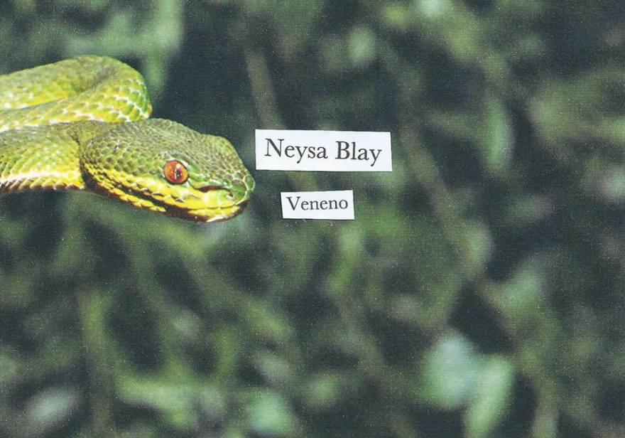 """Portada para el single """"Veneno"""" de la cantante puertorriqueña Neysa Blay"""